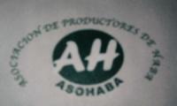 ASOHABA