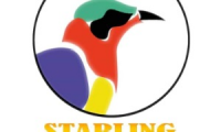 Starling Constructions