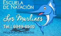 Escuela de Natación los Marlines