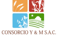 CONSORCIO Y & M SAC
