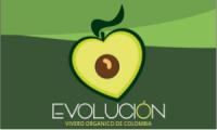 Evolución Vivero Orgánico de Colombia