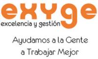 EXYGE CONSULTORÍA DE GESTION EMPRESARIAL