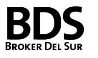 Broker del Sur - PAYSUR