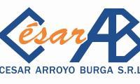 CESAR ARROYO BURGA SRL