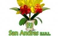 FJ SAN ANDRES EIRL
