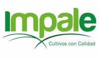 Impale Agrícola S.A.
