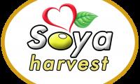 Soya Harvest