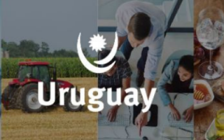 Multisectoral Virtual Business Event with Uruguayan companies
