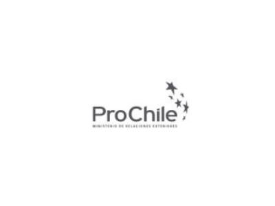 Encuentro audiovisual Chile – China