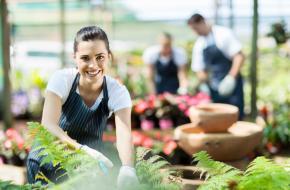 ¿Mujer emprendedora? Accede a mentorías y capacitaciones en gestión empresarial